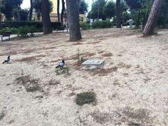 Dillo a #NapoliTime  Napoli verde pubblico abbandonato: parco Mascagna