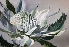 Painting Gallery, Mural Painting, Protea Art, Flower Mural, Unique Paintings, Lovers Art, Art Pictures, Cool Art, Canvas Art