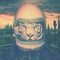 Real cool graphic identity by Xosar. Rock Album Covers, Sky Watch, Animal Masks, Space Cat, I Love Cats, Science Fiction, Fantasy Art, Cool Pictures, Sci Fi
