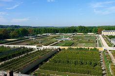 Le potager du roi   Versailles