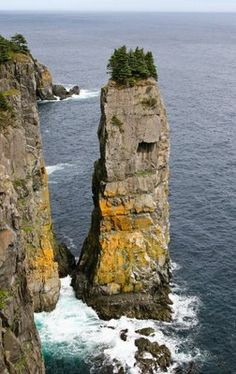 Sea stacks along the Gulf of St. Lawrence, Gros Morne National Park. Newfoundland