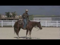 Teaching collection - YouTube - This is an excellent way to teach a young horse collection!