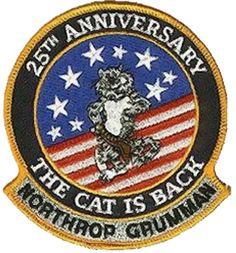 f-14 patch