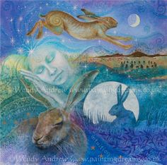 Hare Dreaming by Wendy Andrew