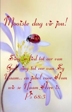 Good Morning Messages, Good Morning Wishes, Good Morning Quotes, Lekker Dag, Afrikaanse Quotes, Goeie More, Bible Scriptures, Qoutes, Singing