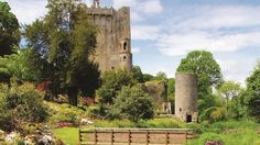 Europe's Most Picture-Perfect Gardens [Page 3 of Castle Gardens, Ireland Ireland Travel, Italy Travel, Cork City, Castles In Ireland, London Travel, Studio, Amazing Nature, Trip Planning, Britain