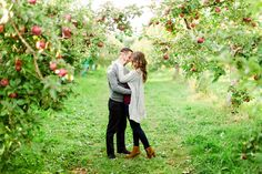 Apple orchard engagement shoot. Montreal engagement. Photo by : www.bartekandmagda.com