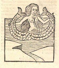 medieval mermaid - Google Search