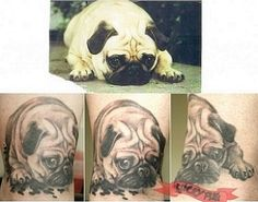 Ankle pug tattoo by Denis Prevost of Liveonce Tattoo, Val Caron, ON, Canada - www.luckypug.com