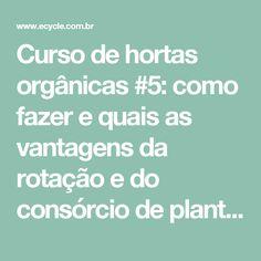 Curso de hortas orgânicas #5: como fazer e quais as vantagens da rotação e do consórcio de plantas