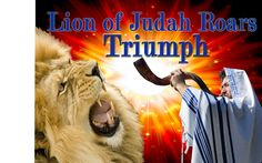 Lion of Judah Flags Banners   Gallery Worship Banners and Flags from High Praise…