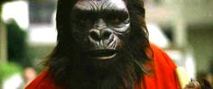 Archives Of The Apes: Conquest Of The Planet Of The Apes (1972) Part 26