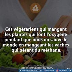 C pas faux! Funny French, Rap, Spiritus, Slogan Tshirt, Image Fun, French Quotes, Good Jokes, Amazing Quotes, Funny Faces