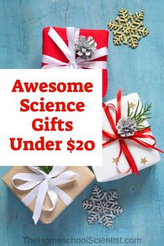 awesome science gifts under 20 subjects Science Inquiry, Physical Science, Science Education, Science Activities, Science Labs, Earth Science, Science Experiments, Middle School Science, Elementary Science