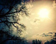 spooky landscape photograph / sun lomo halloween by shannonpix on Etsy.