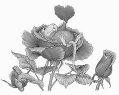 Mousekin in the Roses Blank Coloring Pages, Colouring Pics, Coloring Books, House Mouse Stamps, Mouse Color, Sketch 4, Cute Mouse, Pet Rocks, Penny Black