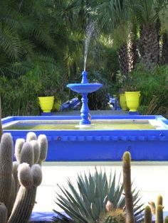 Brightest cobalt blue and striking yellow are an iconic feature of the Marjorelle Gardens in Marrakech. Create this look at home with help from Maroque http://www.maroque.co.uk/
