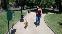 Claudia Pino - Alaniz Polera, Foster Jeans, Romano Zapatos, Forever 21 Lentes De Sol - Walking de dog