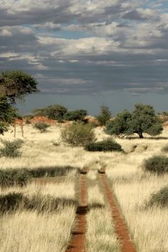 Our route into the desert Heading into the Kalahari east of Mariental, lets see where we end up !!