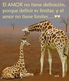 "I can understand this! Loosely it means ""Love has no definition; because to define is to limit and love has no limits"""