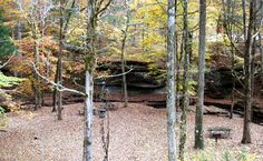 Photo taken from the parking area at Glenrock Branch looking down into the picnic area next to the creek and rock formations. Photographer: Jeff Wilson Date Photo Taken: November 2013 Picnic Area, Picnic Table, Natchez Trace, Rock Formations, Photo Contest, Places To See, Tennessee, November, America