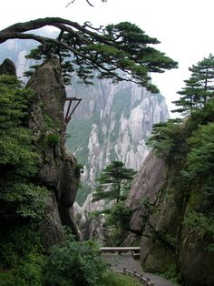 "Mount Huangshan, China. Huangshan National Park is a ""sister park"" to Yosemite National Park in California. You can kind of see why."
