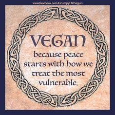 vegan because peace starts with how we treat the most vulnerable Vegan Facts, Vegan Memes, Vegan Quotes, Why Vegan, Vegan Vegetarian, Vegan Food, Vegan Picnic, Vegan Muscle, How To Become Vegan