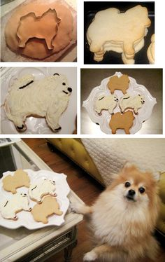 Pomeranian shaped sugar cookies <3 I want to make these