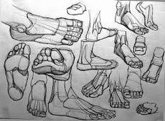 Resultado de imagen para anatomia para dibujar
