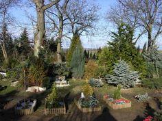 Park, Stepping Stones, Outdoor Decor, Plants, Home Decor, Pictures, Photograph Album, Stair Risers, Decoration Home