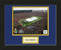 One framed 8 x 10 inch University of Michigan photo of Michigan University Stadium with a customizable nameplate*, double matted in team colors to 11 x 14 inches.  $49.99 @ ArtandMore.com