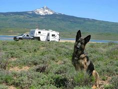 Rene Agredano is a full-time RVer who has traveled with dogs for over seven years. Read her tips for making your pet feel at home in your rig.