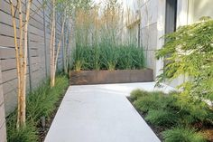 Modern Minimalist Home Backyard Landscape With Awesome Garden — Fres Hoom Courtyard Design, Japanese Garden Design, Modern Minimalist, Backyard Landscaping, Landscape Design, Sidewalk, Awesome, Plants, Image