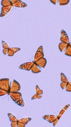 purple butterfly wallpaper #butterfly #monarch #purple #butterflies #backdrop #background #wallpaper #tiktok #aesthetic #cute #simple #freetoedit