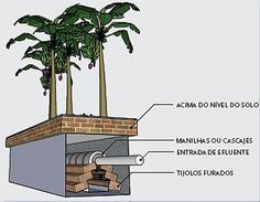 Veja como construir uma fossa ecológica. Sistema BET - Instituto Ecoação