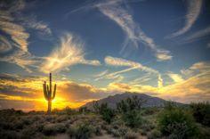 Desert Landscape  Photo by Jason Corneveaux