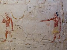 https://flic.kr/p/95eJd5 | Mastaba of Princess Idut | Mastaba of Princess Idut Saqqara Egypt (Mastaba of Ihy)