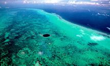 Belize Barrier Reef from The list of the Seven Underwater Wonders of the World, created by CEDAM International (Conservation, Education, Diving, Awareness and Marine research), a non-profit organization of divers