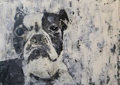 COOL画「ボストンテリア」[TOMOYA] | ART-Meter