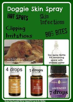 Natural Relief for Dog Hot Spots!{I'm a Young Living Distributor! Young Living Copaiba, Young Living Oils, Young Living Essential Oils, Essential Oils Dogs, Essential Oil Uses, Doterra Essential Oils, Yl Oils, Doterra Oil, Dog Hot Spots