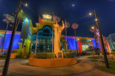 Ron Jon Surf Cocoa Beach - Kingdom of Surf flickr florida surfing - Google Search