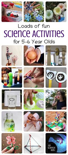 Loads of fun science activities for year olds (kindergarten & year ones), by. - Loads of fun science activities for year olds (kindergarten & year ones), by Go Science Kids. Activities For 6 Year Olds, Creative Activities For Kids, Science Activities For Kids, Montessori Activities, Science Experiments Kids, Preschool Activities, Easy Science, Summer Activities, 5 Year Old Crafts