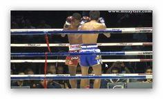 Video: Muay Thai - Nichao vs Tepptitak - Lumpini Stadium, 17 Januar 2014