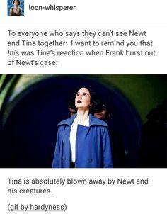 Tina Goldstein is an inspiration