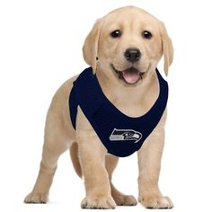 Seattle Seahawks Pet Vest Harness ....ONLY $19.95!!  Must have!!!!!!!!!!!!!