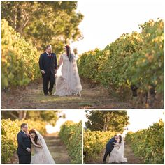 Bride and Groom in the Vineyard at Sandalford Winery Wedding Tips, Fall Wedding, Wedding Photography Tips, Photography Ideas, Rain And Thunderstorms, Vineyard Wedding, Family Photographer, Bride Groom, Swan