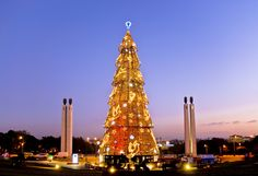 Navidad en Portugal - http://www.absolutportugal.com/navidad-en-portugal-3/