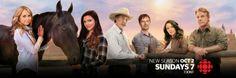 Season 10 Twitter Banner (x)