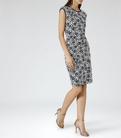 Womens Navy/cream Lace Bodycon Dress - Reiss Ralli