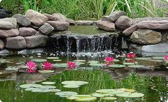 a small rock waterfall into a pond